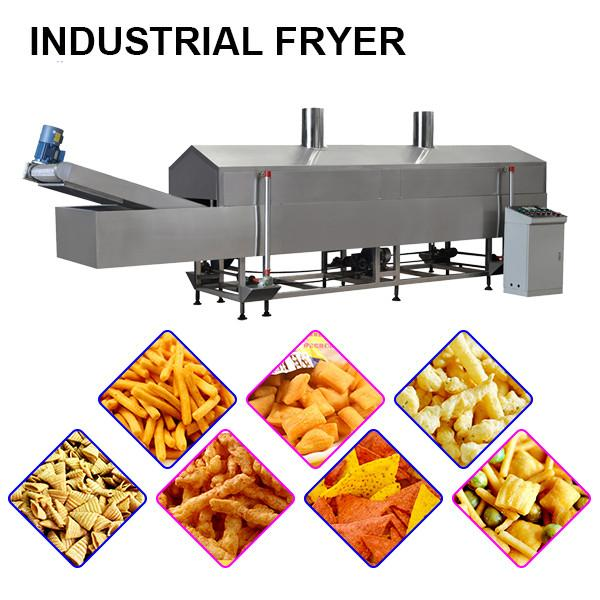 Industrial Automatic Continuous Deep Fat Food Fryer #1 image