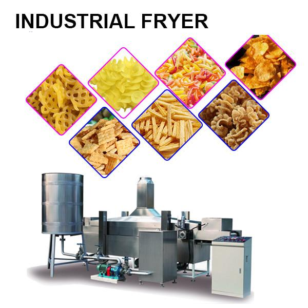 Industrial Automatic Continuous Deep Fat Food Fryer #2 image